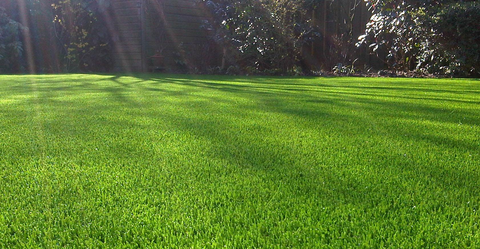 Onderhoudsvriendelijke Tuin Aanleggen : Onderhoudsvriendelijke tuin dankzij natuurlijk kunstgras in twente